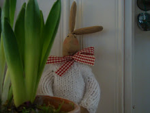 Kaninbesök i kök