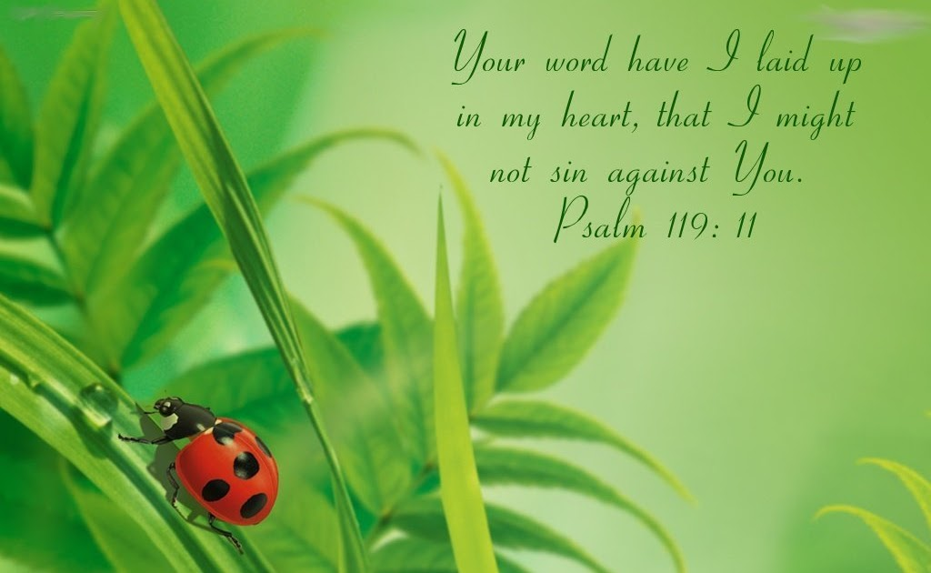 christian wallpapers  psalm 119  11