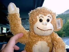 Hola a todos, soy Mono Javi