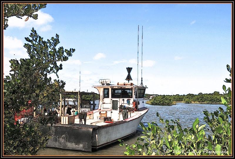 Cedar key florida photos fishing boat for Cedar key fl fishing
