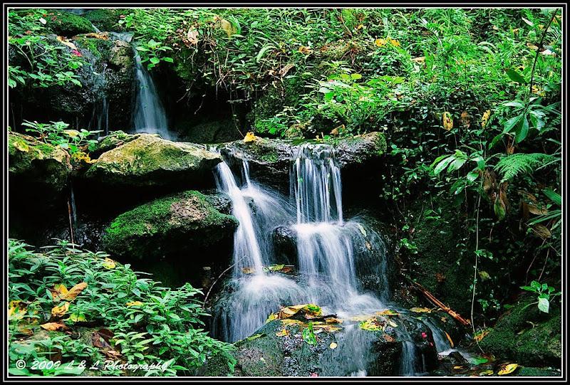 Florida Fotos Waterfalls At Rainbow Springs State Park