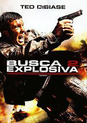 Baixar Filme Busca Explosiva 2 (Dual Audio) Online Gratis