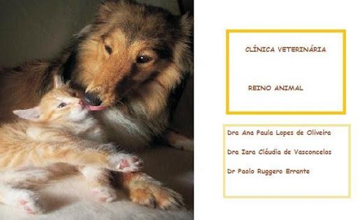 Clínica Veterinária Reino Animal