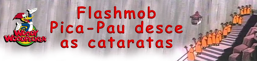 Flash Mob Pica-Pau desce as cataratas