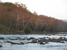 South Holston River