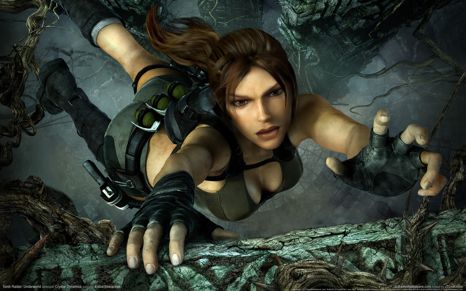 Tomb Raider HD & Widescreen Wallpaper 0.49966560286428