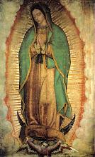 N. Sra. de Guadalupe; Patrona de esta Iglesia