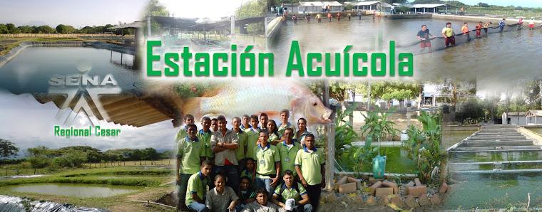 Blog Acuicola CBC