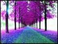 sueños del alma:mi mundo es azul