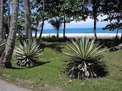 Puerto Veijo