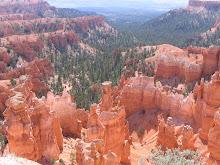 .Southwest  U.S.A.   2008