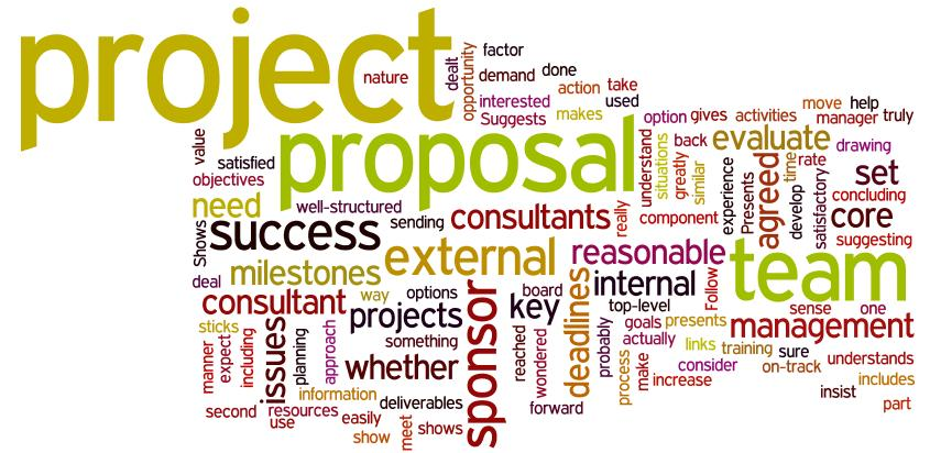 Team Based Consulting Ensure Project Success By Demanding Proposal