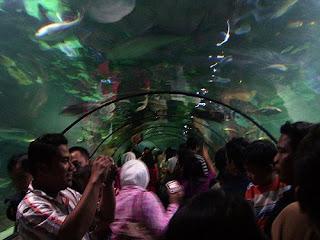 seaworld jakarta indonesia