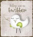 Twitter!!! Siga @claudinhafisio