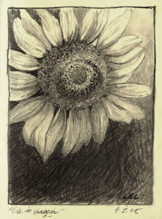 sunflower drawing by Lori Levin