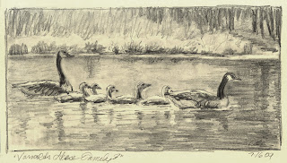 Drawing of Geese in Moleskine by Lori Levin