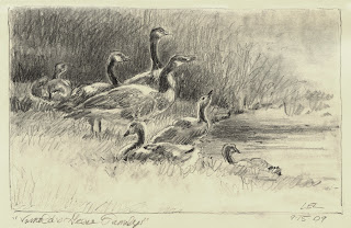 Drawing of Geese by Lori Levin