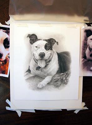 custom pet portrait by Lori Levin