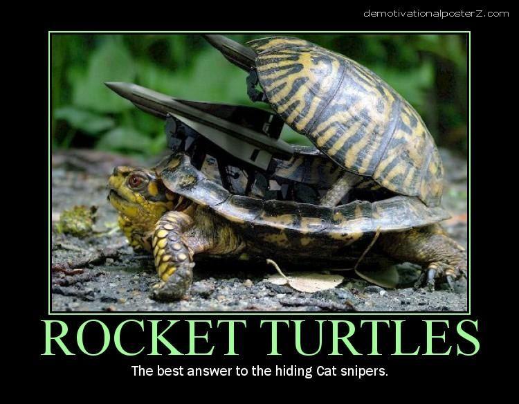 Rocket Turtles motivational poster