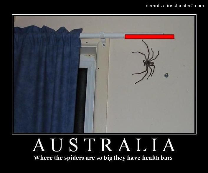 Australia - where the spiders are so big they have health bars.