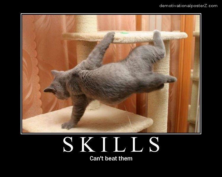 Skills - Can't Beat Them cat
