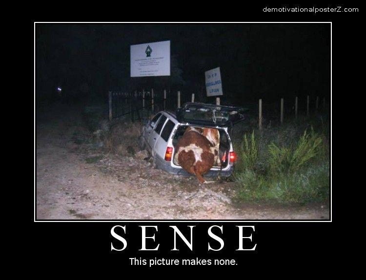 Sense - This picture makes none
