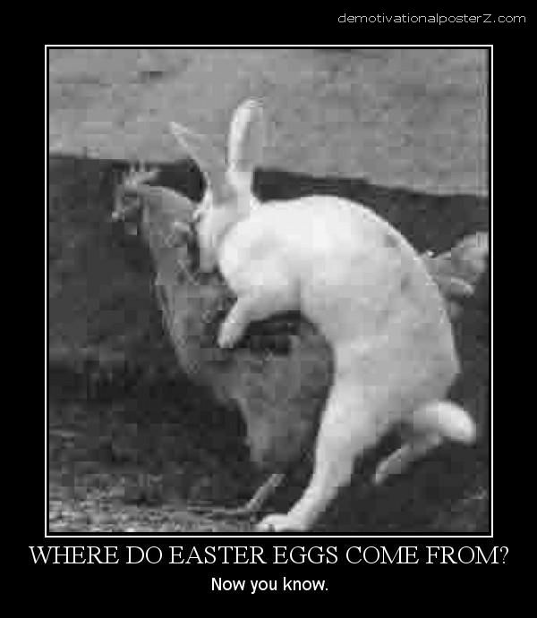 Where Do Easter Eggs Come From