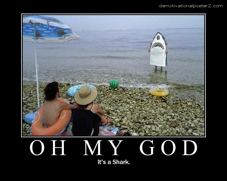 Oh my God it's a shark on the beach