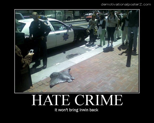 Hate Crime - it won't bring Irwin back stingray dead