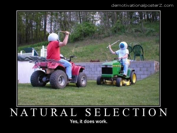 Natural selection motivational poster