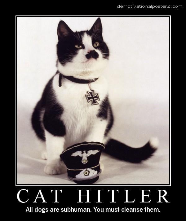 cat hitler motivational