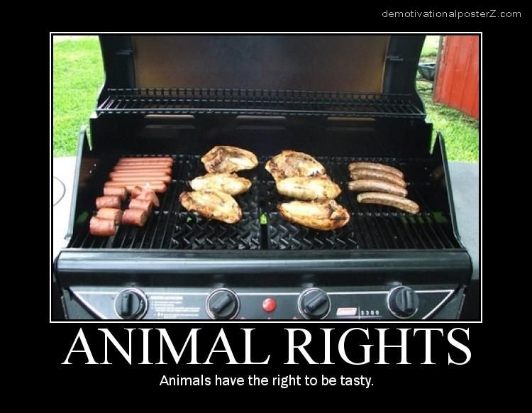 ANIMAL RIGHTS motivational