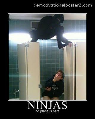 ninja in toilet