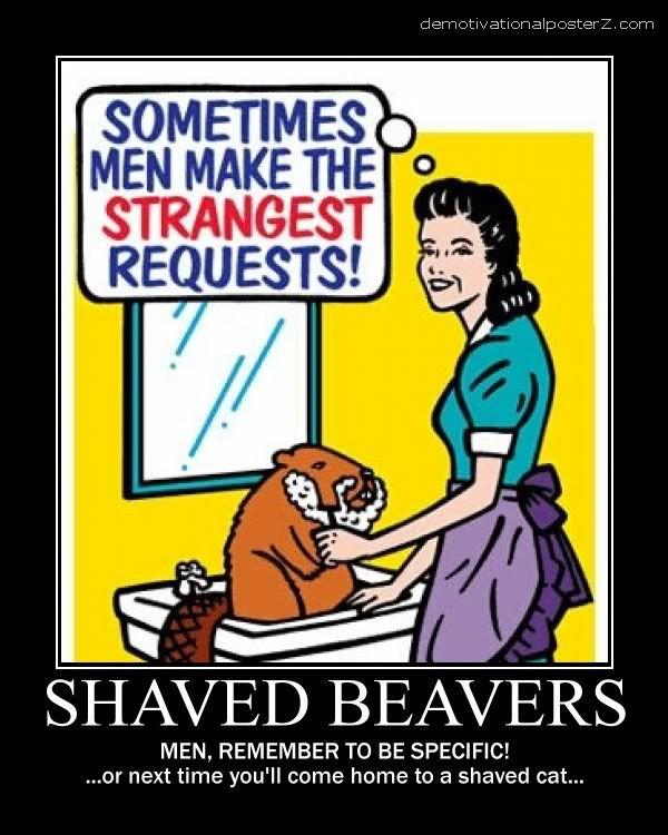 shaved beaver