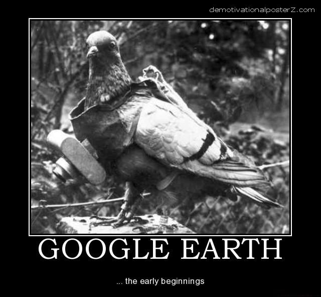 http://1.bp.blogspot.com/_akLHpeO7qyA/THVe3D553KI/AAAAAAAACbA/VS1cBQip8Ag/s1600/google-earth-google-earth-map-geo-bird-pigeon-dove-photo-sat-demotivational-poster-1265141901.jpg