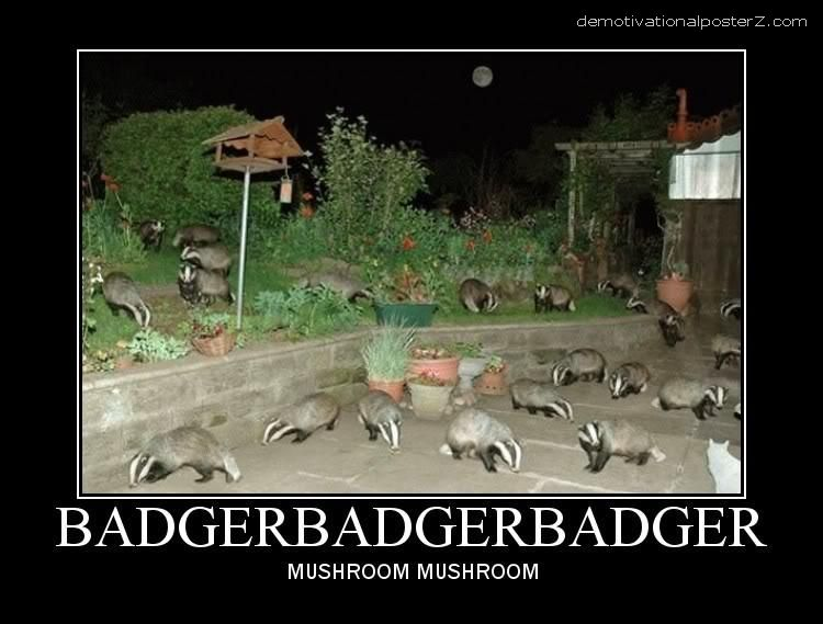 BADGER BADGER BADGER MUSHROOM MUSHROOM