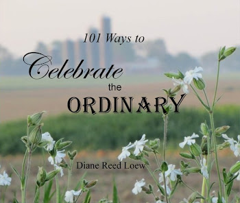 Celebrate the Ordinary by Diane Reed Loew, Illustrated by Diane Reed Loew