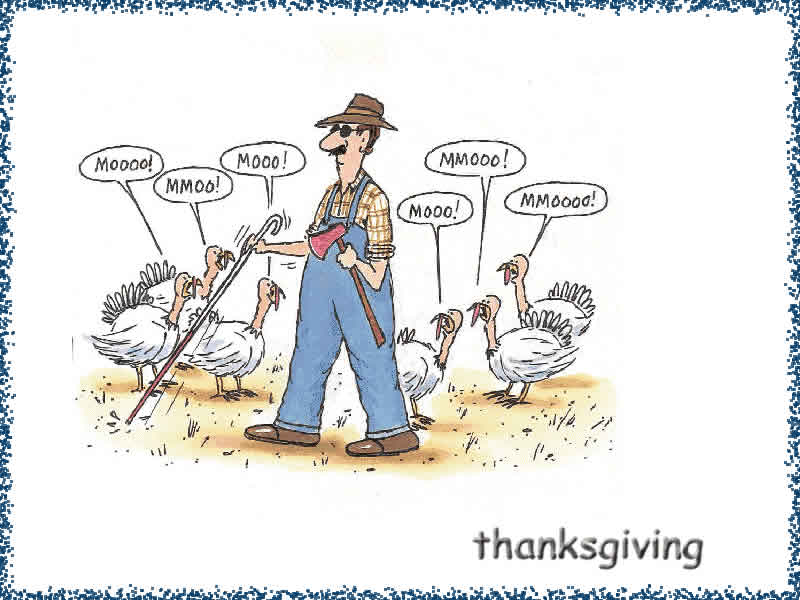 gallery for thanksgiving funny wallpapers