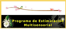 ESTIMULACIN MULTISENSORIAL