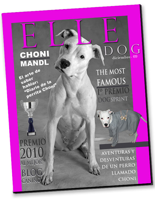 PORTADA REVISTA ELLE DOG 2009