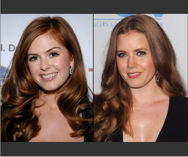 isla fisher amy adams look alike. ISLA FISHER AND AMY ADAMS