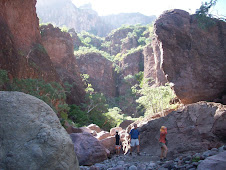 Steinbeck Canyon, near Puerto Escondido  11/2009