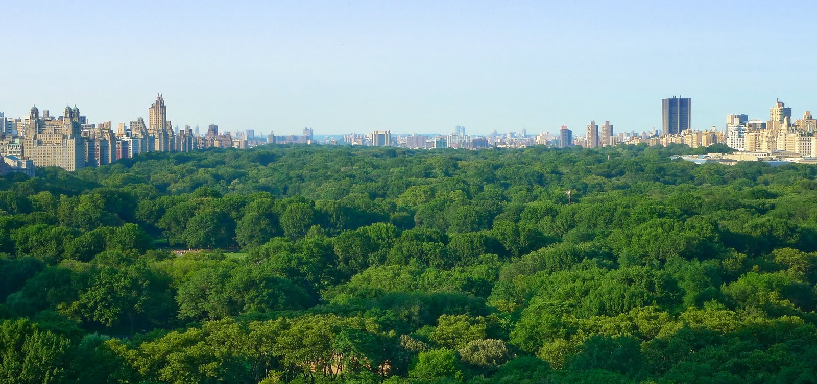 Central park, taken by an old classmate Sean Du