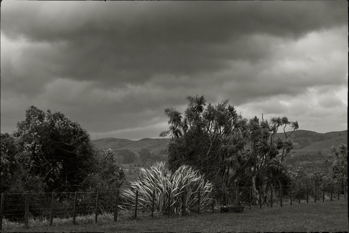 Wild weather in the Pohangina Valley