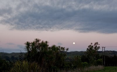 Dawn moon over the Pohangina Valley