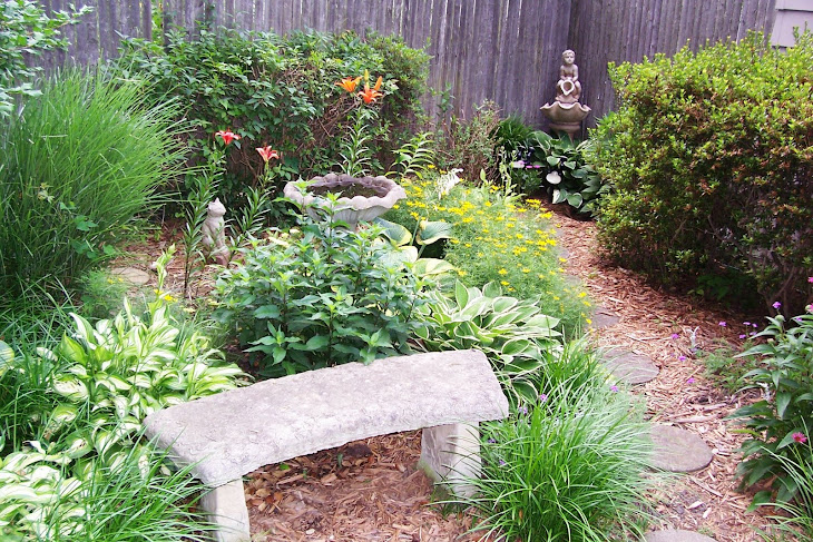 Abigail's garden