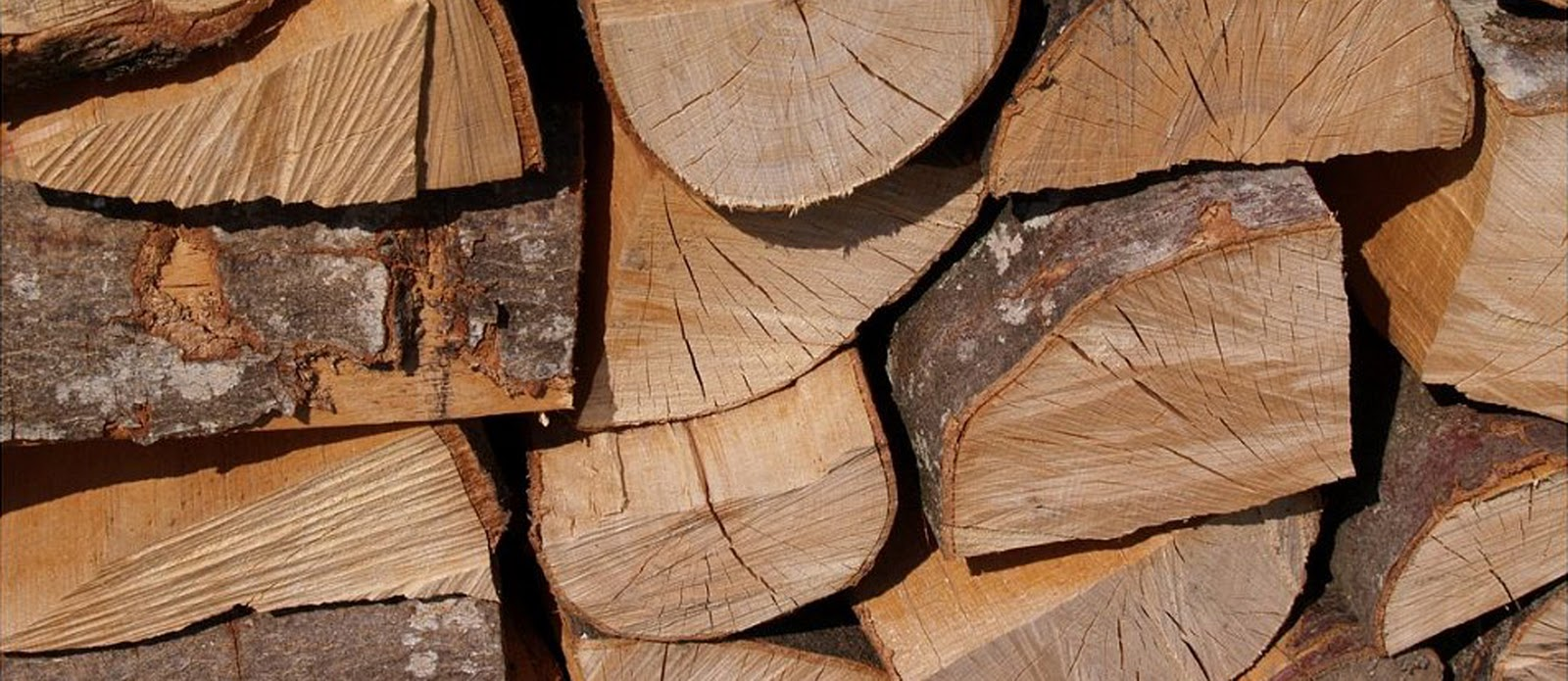 Hout Related Keywords & Suggestions  Hout Long Tail Keywords