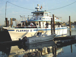 Ny charter party boats for Brooklyn fishing boat