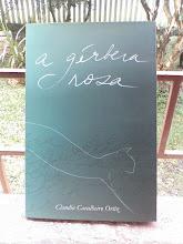 meu livro de estreia