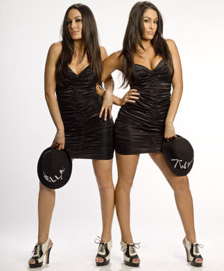 who are the bella twins dating